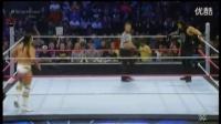 精彩WWE爆乳女裁判撕逼卢瑟夫 (5)