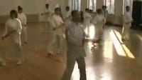 陈氏太极拳视频教程免费下载_养生24式太极拳