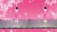 韩黎纱广场舞《亲疙蛋下河洗衣裳》背面演示教学版