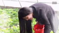 【美女��真系列】美女摘草莓_天津美女原����l��真_胡子�z影俱�凡�_凡神��女_天津模特��真系列