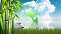 891大自然清新竹林竹子竹海logo演绎水面出标识动画片头AE模版