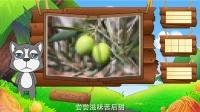 看图识物 第49集 木瓜橄榄香瓜