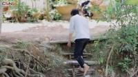 Yeu Nguoi Chung Vach - Duong Hong Loan __Anh Cẩm : Zalo 0988240195