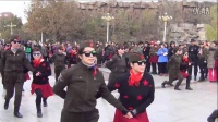 马王爷2016、11、20天津西沽公园