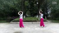 点击观看《民族舞演示 拔根芦柴花 花与影广场舞》