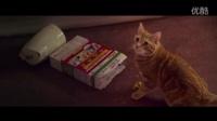 【流浪猫鲍勃】电影预告 │ 不再让你流浪