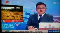 2016-12-14贵州-2播出的百姓关注(3)自食其果  模特梦 货车逃逸 醉酒乘客 火灾救援 疯牛 新闻追踪 护林员 惹不起的邻居 简讯