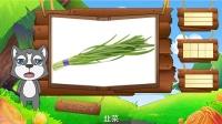 看图识物 第60集 白菜韭菜洋葱