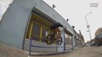 FACTS - ANIMAL BIKES - BMX