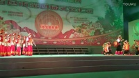 百色第四届文艺汇演乐业专场(2) QQ1205031519摄于百色森林公园20161226