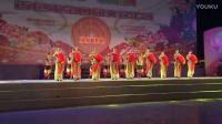 百色第四届文艺汇演乐业专场(7) QQ1205031519摄于百色森林公园20161226