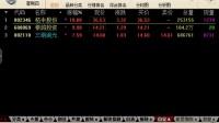 股票做T+0拉升涨停 炒股操纵蓝筹股涨停-股票A生