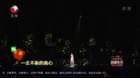 小幸运 赵丽颖 东方卫视跨年 161231 1080P