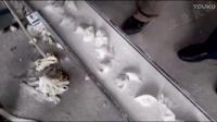 手工饺子机,水饺制作机