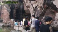 常青中学2016年天台山三门新昌旅游纪实