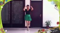 广场舞性感丝袜广场舞想西藏