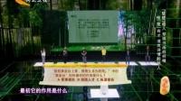 中华好诗词 20141205 早川太基迷恋中华文化 楚凌岚智勇前来挑战