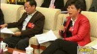 自治区政府领导参加各代表团审议听取代表意见和建议 170116 广西新闻