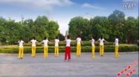 舞动旋律2007《渴望自由》步子舞 32步正面及分解_高清