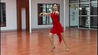 桑巴简介少儿 成年 拉丁舞 恰恰 斗牛 伦巴自学教学视频