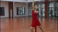 桑巴2少儿 成年 拉丁舞 恰恰 斗牛 伦巴自学教学视频