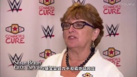 WWE2017年2月12日最新比赛视频中文解说WWE中文字幕