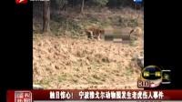 触目惊心!宁波雅戈尔动物园发生老虎伤人事件