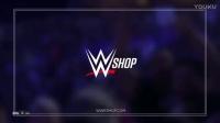 WWE.205.Live.2017.01.31