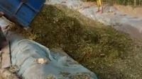 小四轮带玉米青储机 视频1