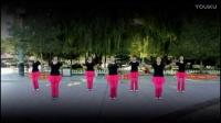 2017年新疆沙湾最新美女广场舞视频