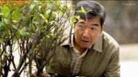 老爸当家  电视剧 第21-22集剧情介绍(主 演:张国立 蒋欣)