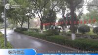 上海市青浦区徐泾镇徐盈路158弄210号介绍