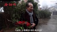 情人节暖心视频,洛阳父母秀恩爱虐狗