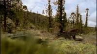 《人与自然》 20110826 自然发现——与恐龙同行(一)