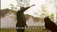 蒙古獒幼犬多少钱-纠正狗狗应门行为