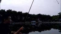 2017年新发明 世界上最小的全自动钓鱼竿 全自动钓鱼漂3.31