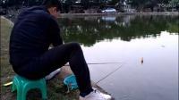 高清无码日本AUV全自动钓鱼漂钓鱼实录