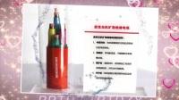 什么是矿物质防火电缆?