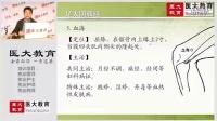 医大教育 2016 中医、中西医执业(助理)医师  技能  经络腧穴(三)_标清