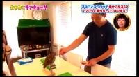 一天一次日本人是怎么把猫头鹰当宠物养的6天狂瘦12斤