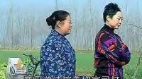 柳琴戏《抢婆婆》( 3)