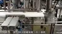 B.GX-II liquid filling capping machine