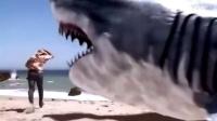 超级大白鲨爬上岸,居然还要动用美式进行炮轰