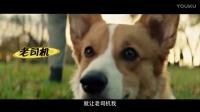 重生三次只为遇见你,《一条狗的使命》终极预告电影
