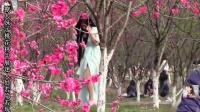 想看桃花 不必等三生三世 撩人妹子桃花林中展迷人处若隐若现