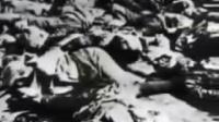 南京大屠杀纪实录