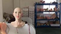 硅胶高仿真机器人头(欢乐飞机器人)