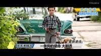 电影《一条狗的使命》温情来袭 6分钟解读完 一条狗的使命终极预告片