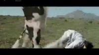 世界上最牛的功夫牛_MjA5ODIwOTA_土豆_高清视频在线观看