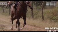 一高中少女穿越到古代,瞬间学会骑马,笑尿了